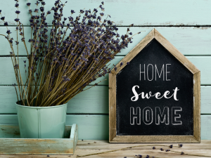 the best products for your natural home
